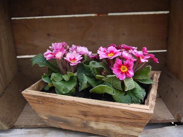 dřevený květináč