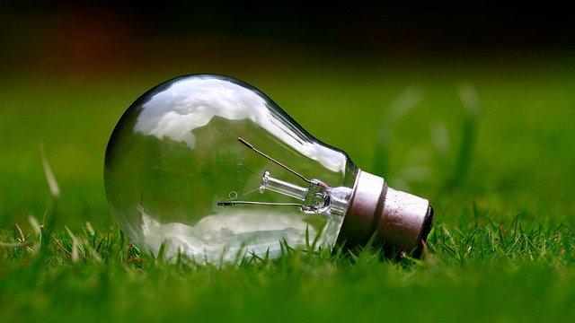 žárovka v trávě.jpg